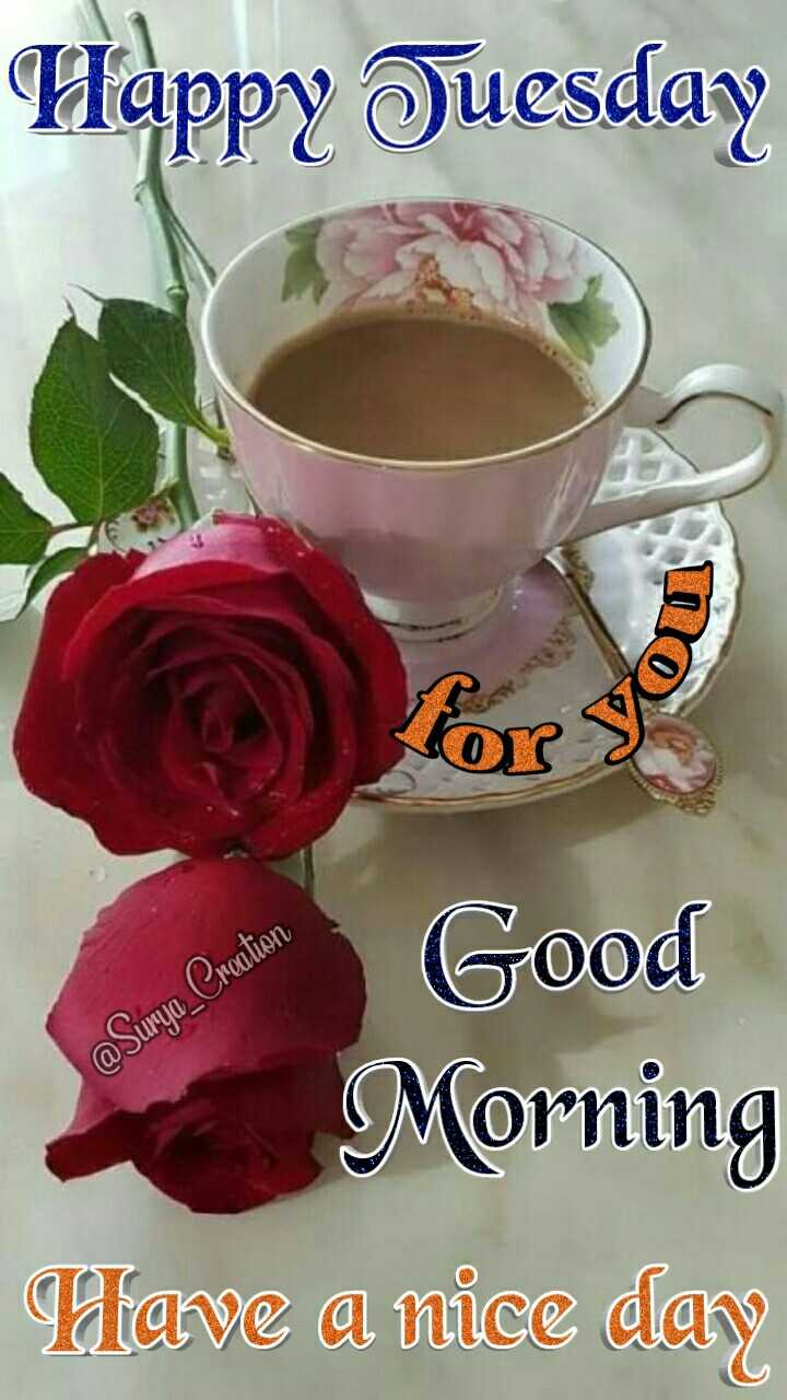 🌷शुभ बुधवार🌷 - Happy Tuesday @ Surya _ Creation PA Good Morning Have a nice day C - ShareChat