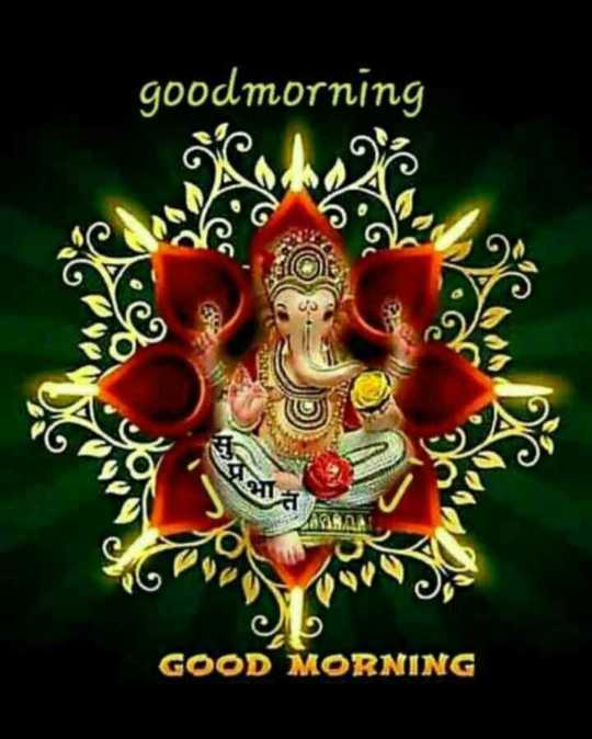 🌷शुभ बुधवार - goodmorning . ng er GOOD MORNING - ShareChat