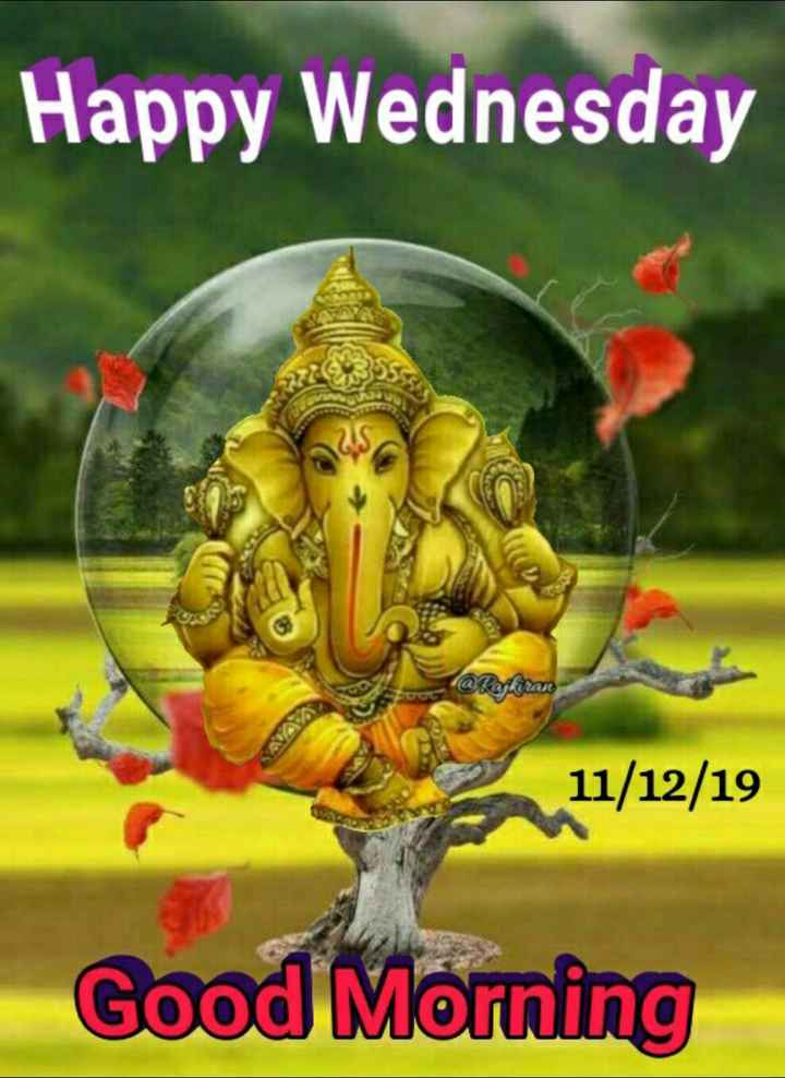 🌷शुभ बुधवार - Happy Wednesday Kiran 11 / 12 / 19 Good Morning - ShareChat