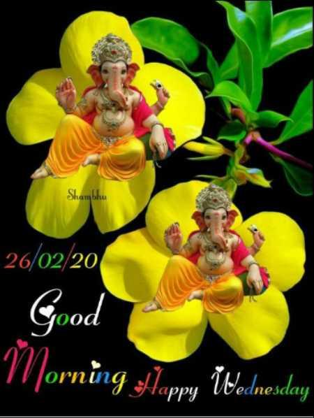 🌷शुभ बुधवार - Shambhu 26 / 02 / 20 Good Morning Happy Wednesday - ShareChat