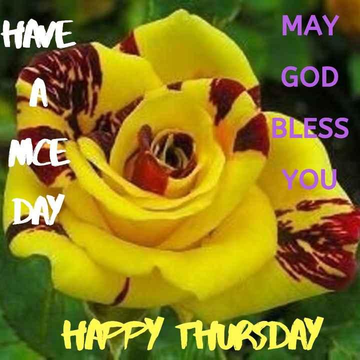 शुभ बृहस्पतिवार - HAVE MAY GOD BLESS VOU DAY HAPPY THURSDAY - ShareChat
