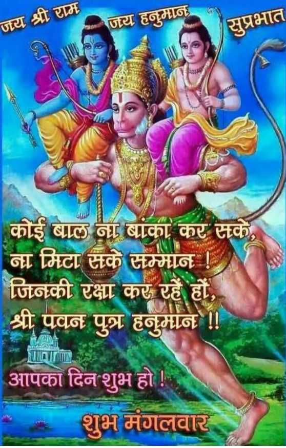 🌷शुभ मंगलवार - जय श्री राम जय हनुमान सुप्रभात कोई बाल ना बांका कर सके , ना मिटा सके सम्मान ! जिनकी रक्षा कर रहे हों , श्री पवन पुत्र हनुमान ! ! | आपका दिन शुभ हो ! शुभ मंगलवार - ShareChat