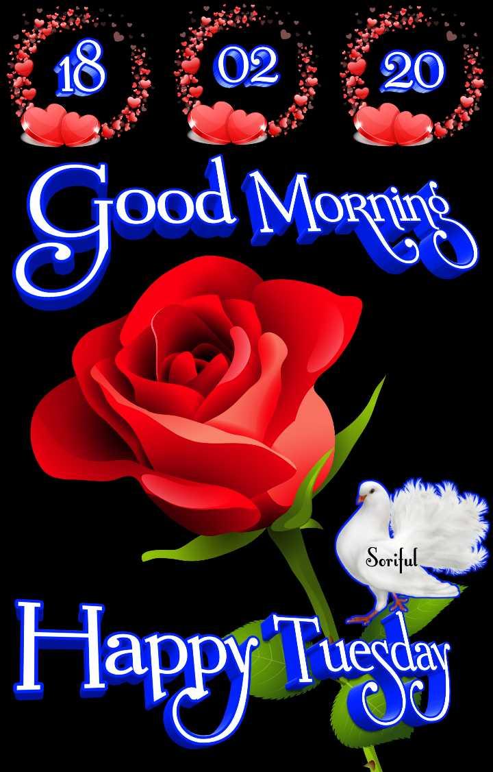 🌷शुभ मंगलवार - Good Morning Soriful Happy Tungly uerdav - ShareChat