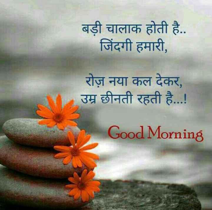 🌷शुभ मंगलवार - बड़ी चालाक होती है . . जिंदगी हमारी , रोज़ नया कल देकर , उम्र छीनती रहती है . . . ! Good Morning - ShareChat