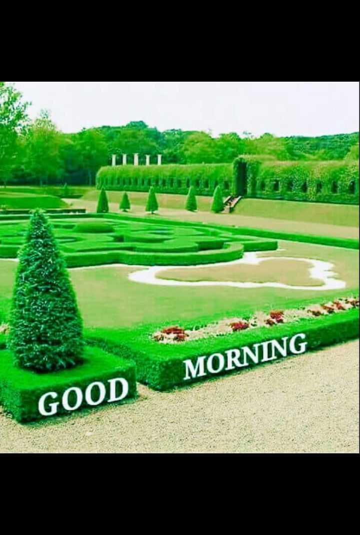 🌷शुभ मंगलवार - TUIT CELLENT MORNING GOOD - ShareChat