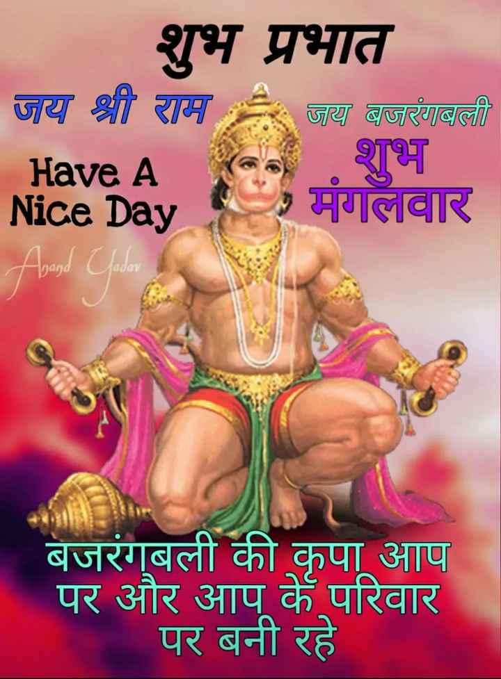 🌷शुभ मंगलवार - शुभ प्रभात जय श्री राम जय बजरंगबली Have A Nice Day Aband Jadar बजरंगबली की कृपा आप पर और आप के परिवार पर बनी रहे - ShareChat