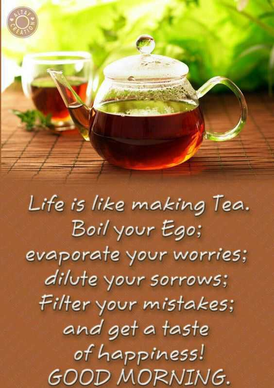 🌷शुभ रविवार - Life is like making Tea . Boil your Ego ; evaporate your worries ; dilute your sorrows ; Filter your mistakes ; and get a taste of happiness ! GOOD MORNING . - ShareChat