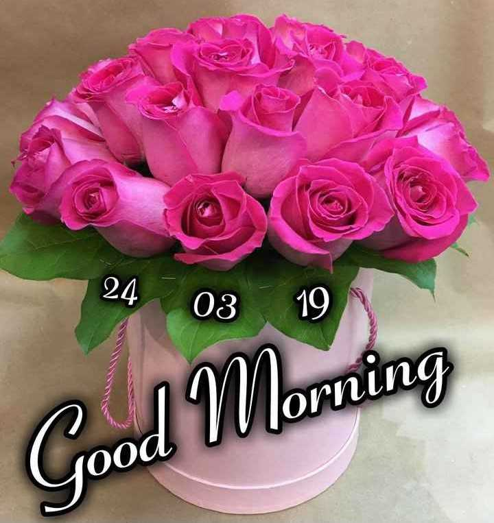 🌷शुभ रविवार - 24 24 . 0319 03 19 Good Morning - ShareChat