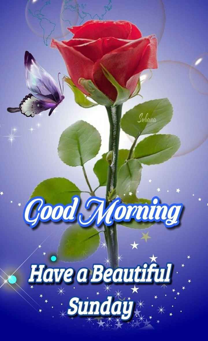 🌷शुभ रविवार - Suhana Good Morning S . Have a Beautiful Sunday - ShareChat