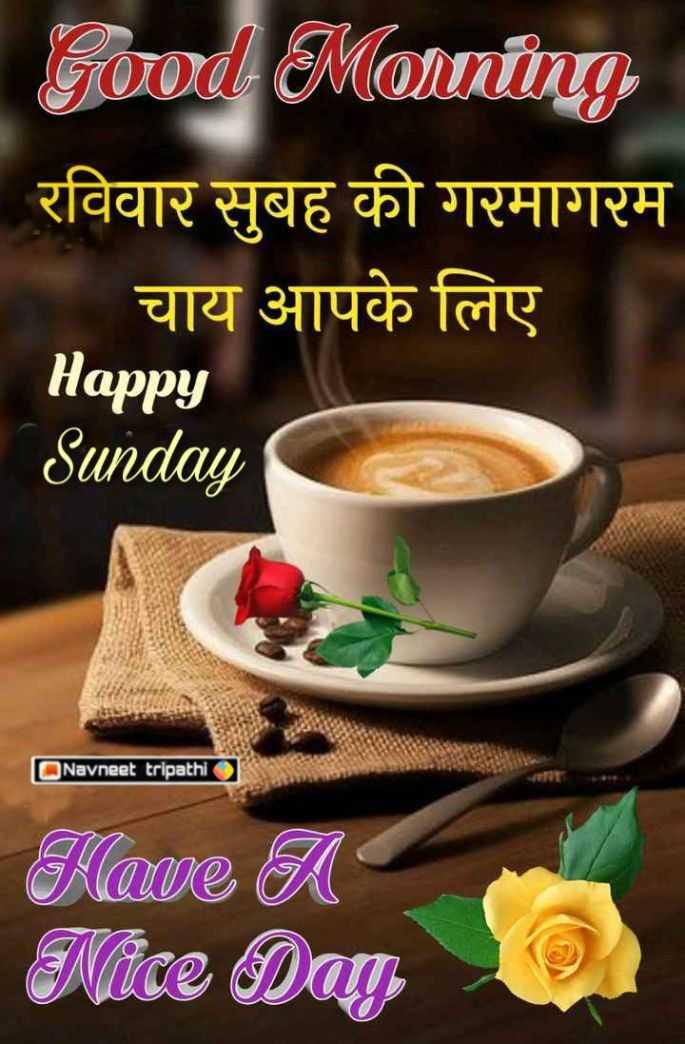 🌷शुभ रविवार - Good Morning रविवार सुबह की गरमागरम चाय आपके लिए Happy Sunday Navneet tripathi Have A Nice Dag - ShareChat
