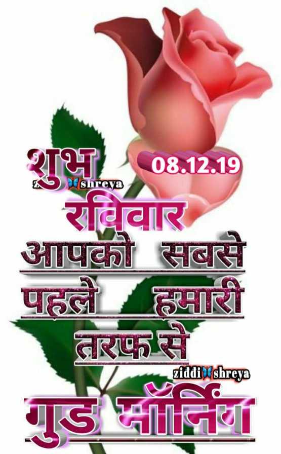 🌷शुभ रविवार - शुभ 08 . 12 . 19 Shreya रविवार आपको सबसे पहले हमारी तरफ से ziddi shreya - ShareChat