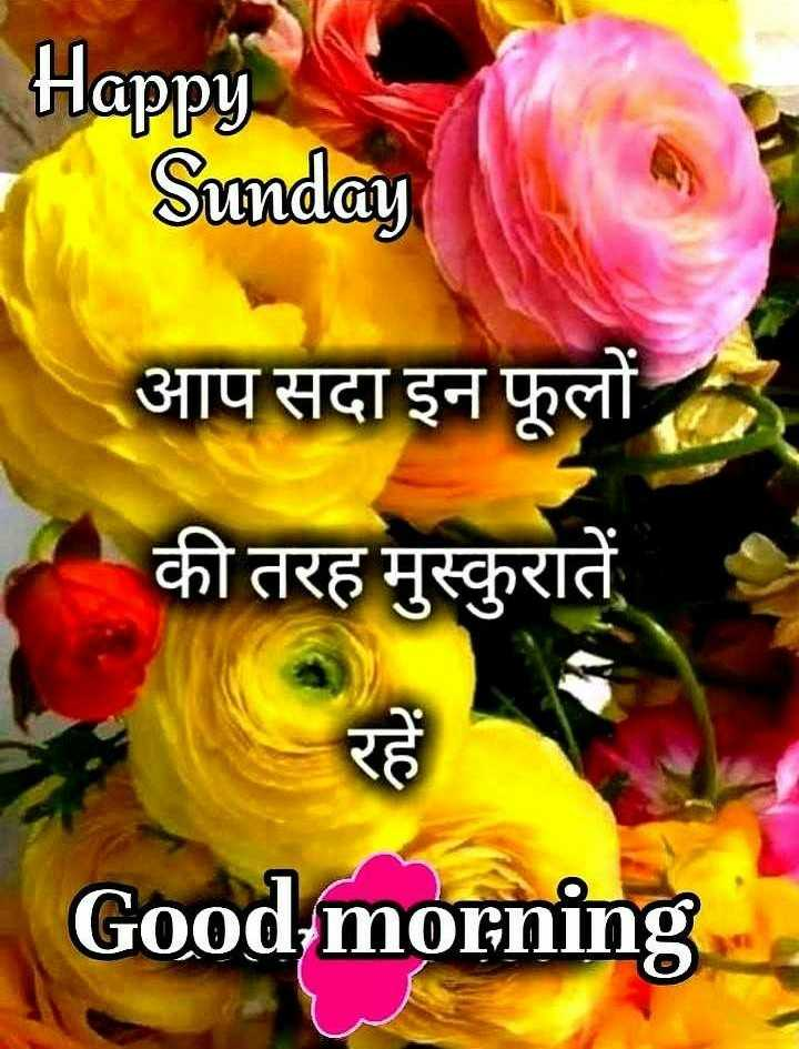 🌷शुभ रविवार - Happy Sunday आप सदा इन फूलों की तरह मुस्कुरातें Good morning - ShareChat