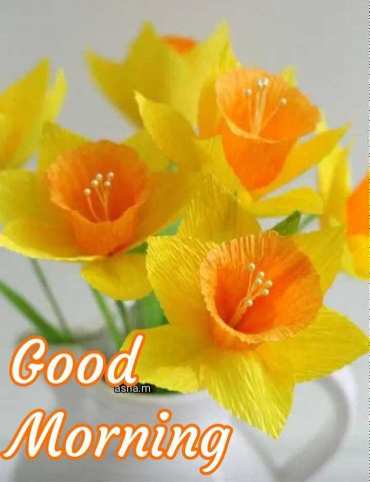 🌷शुभ रविवार - asna . m Good Morning - ShareChat