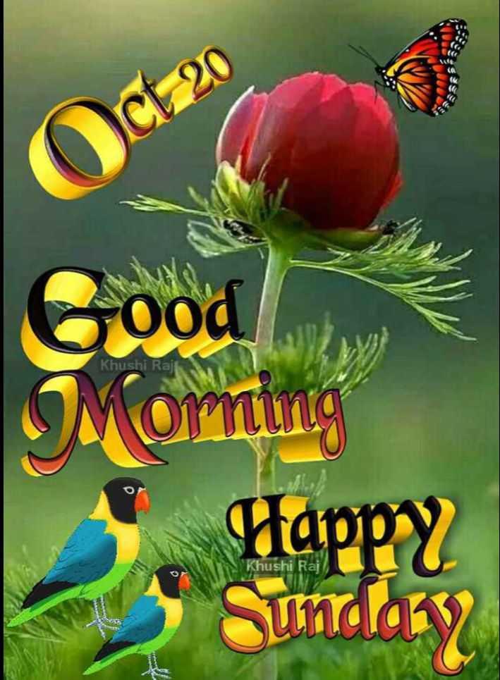 🌷शुभ रविवार - ct 20 Khushi Rajt Good Moming Happy * Sunday Khushi Raj - ShareChat
