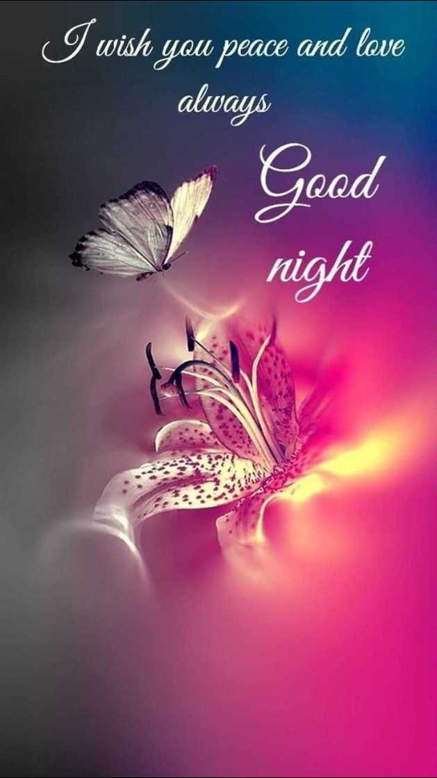 🌙 शुभरात्रि वीडियो - I wish you peace and love always Good night - ShareChat