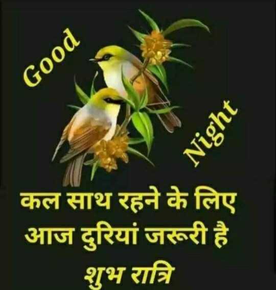 🌛 शुभरात्रि - Good Night कल साथ रहने के लिए आज दुरियां जरूरी है शुभ रात्रि my - ShareChat