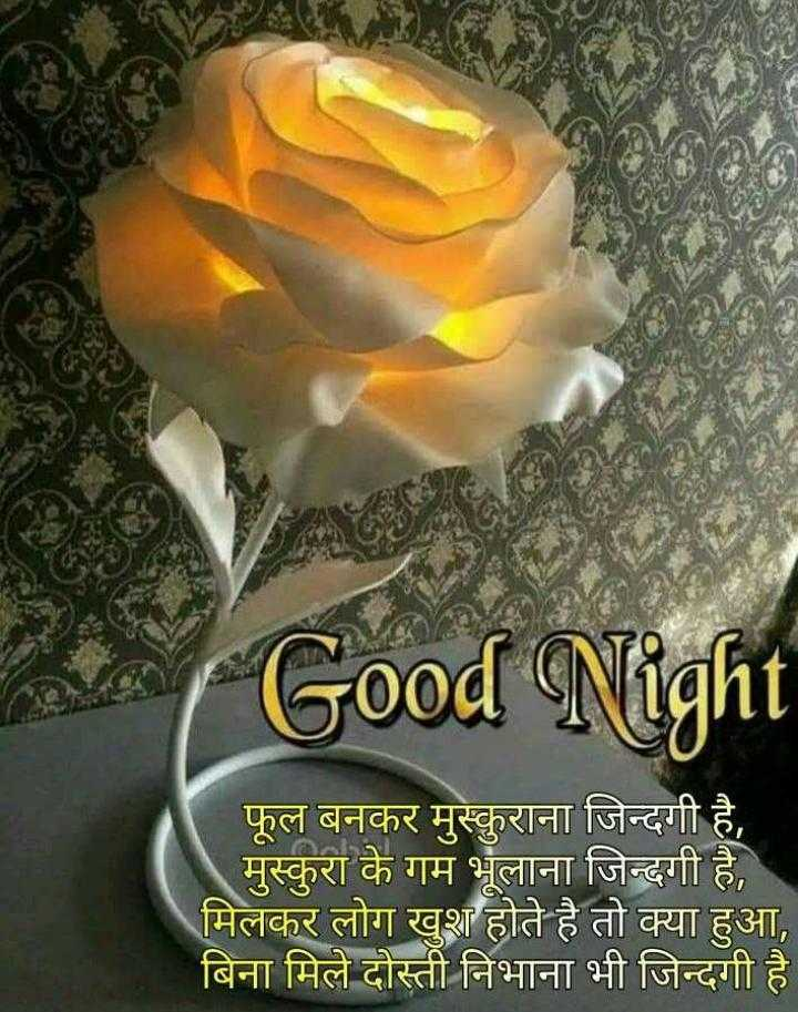 🌙शुभरात्रि - Good Night फूल बनकर मुस्कुराना जिन्दगी है , मुस्कुरा के गम भूलाना जिन्दगी है , मिलकर लोग खुश होते है तो क्या हुआ , बिना मिले दोस्ती निभाना भी जिन्दगी है । - ShareChat