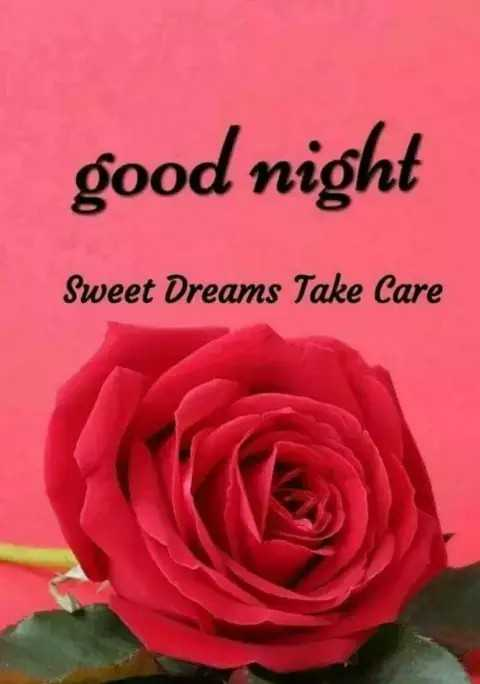 🌙शुभरात्रि - good night Sweet Dreams Take Care - ShareChat