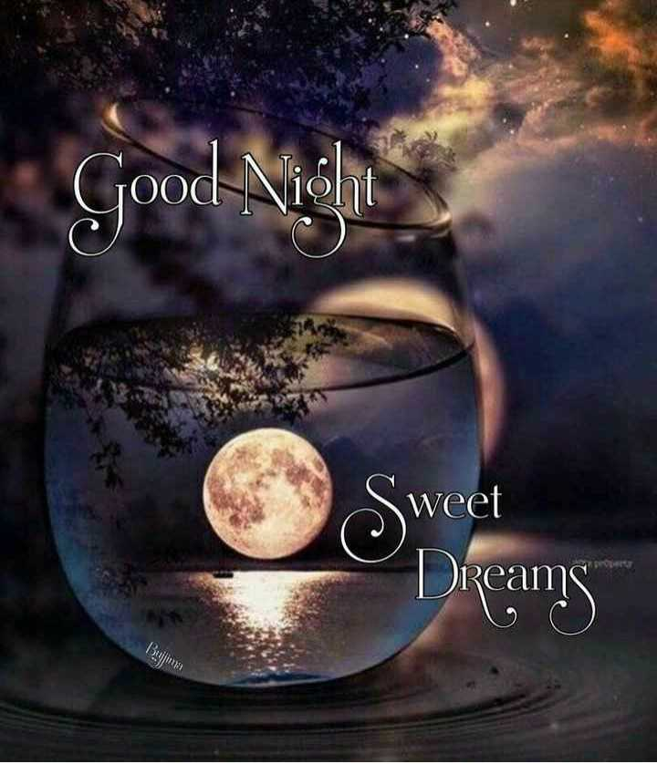 🌙शुभरात्रि - Good Night Sweet Dreams Buja - ShareChat