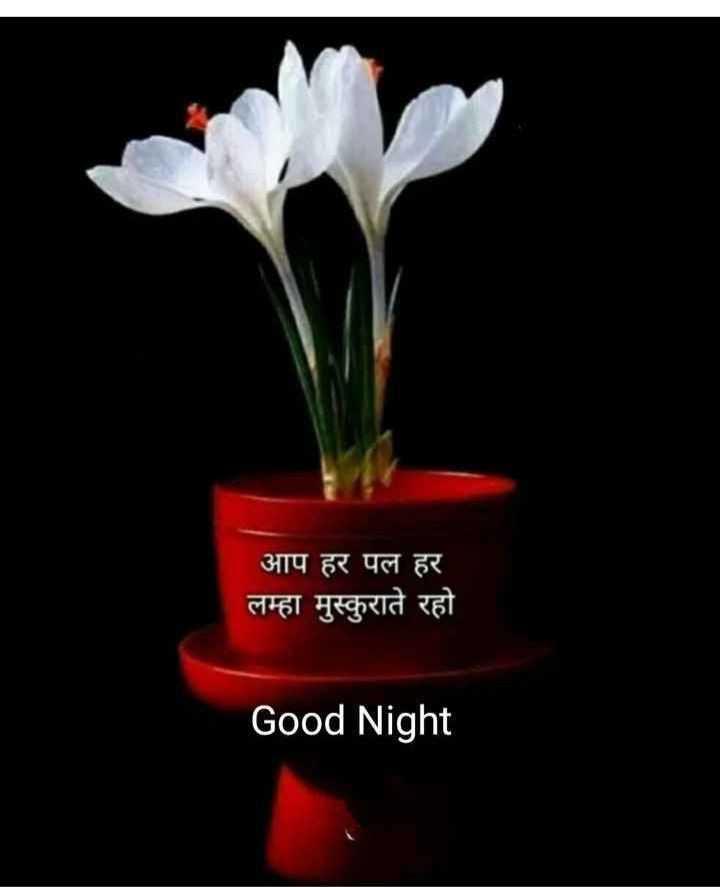 🌙शुभरात्रि - आप हर पल हर लम्हा मुस्कुराते रहो Good Night - ShareChat