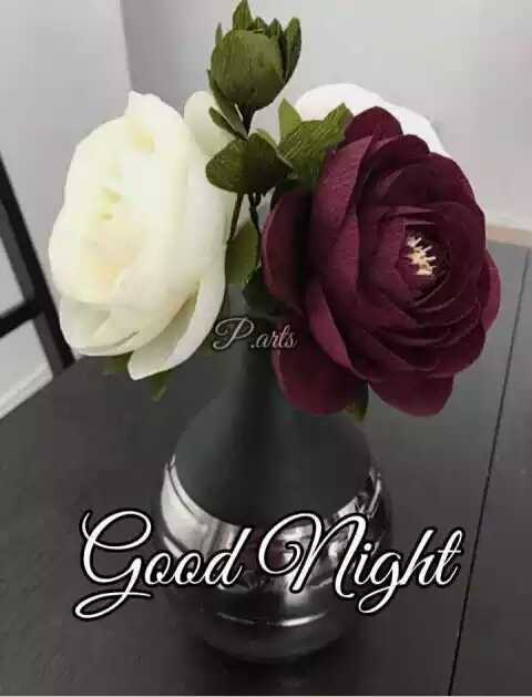 🌙शुभरात्रि - Parts Good Night - ShareChat