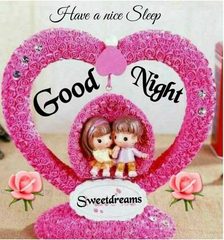 🌙शुभरात्रि - Have a nice Sleep SOLO DO TOYOX AS AOOK CA 100 Joan T Good Migle Sweetdreams Courato - ShareChat