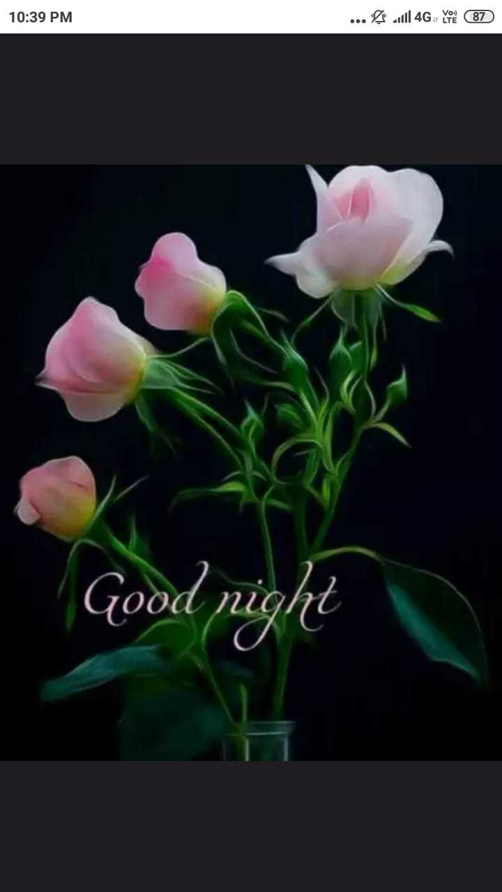 🌙शुभरात्रि - 10 : 39 PM . . . Jill 4G von 87 Good night N2 - ShareChat