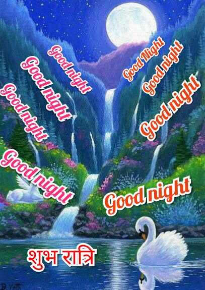 🌹🌹शुभ रात्रि🌹🌹 - Goodnight Goodnight more poob Goodnight Good night Goodnight शुभ रात्रि Goodnight Goodnight - ShareChat