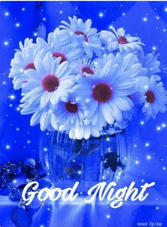 🌙शुभरात्रि - Good Night WAT JY - ShareChat