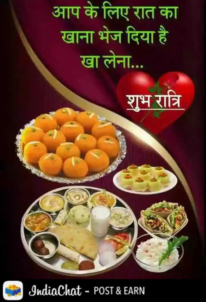 🌠  शुभरात्रि - आप के लिए रात का खाना भेज दिया है । खा लेना . . शुभ रात्रि IndiaChat - POST & EARN - ShareChat