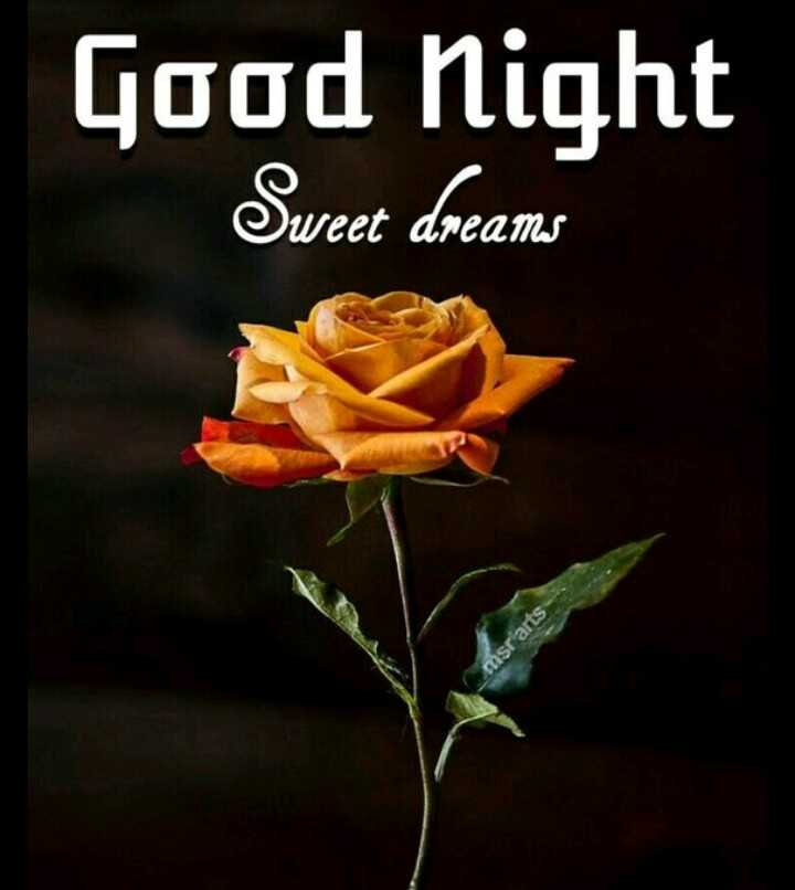 🌙शुभरात्रि - Good Night Sweet dreams msr arts - ShareChat