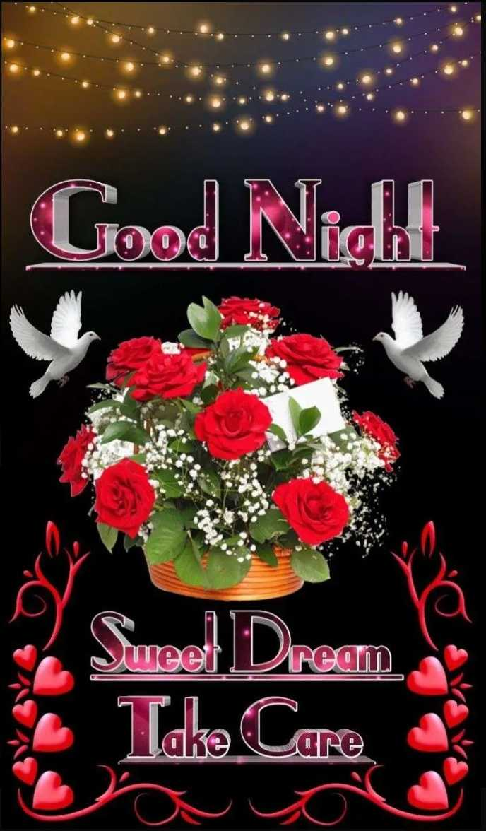 🌙शुभरात्रि - Good Night ream Sureel Dream Take Care - ShareChat