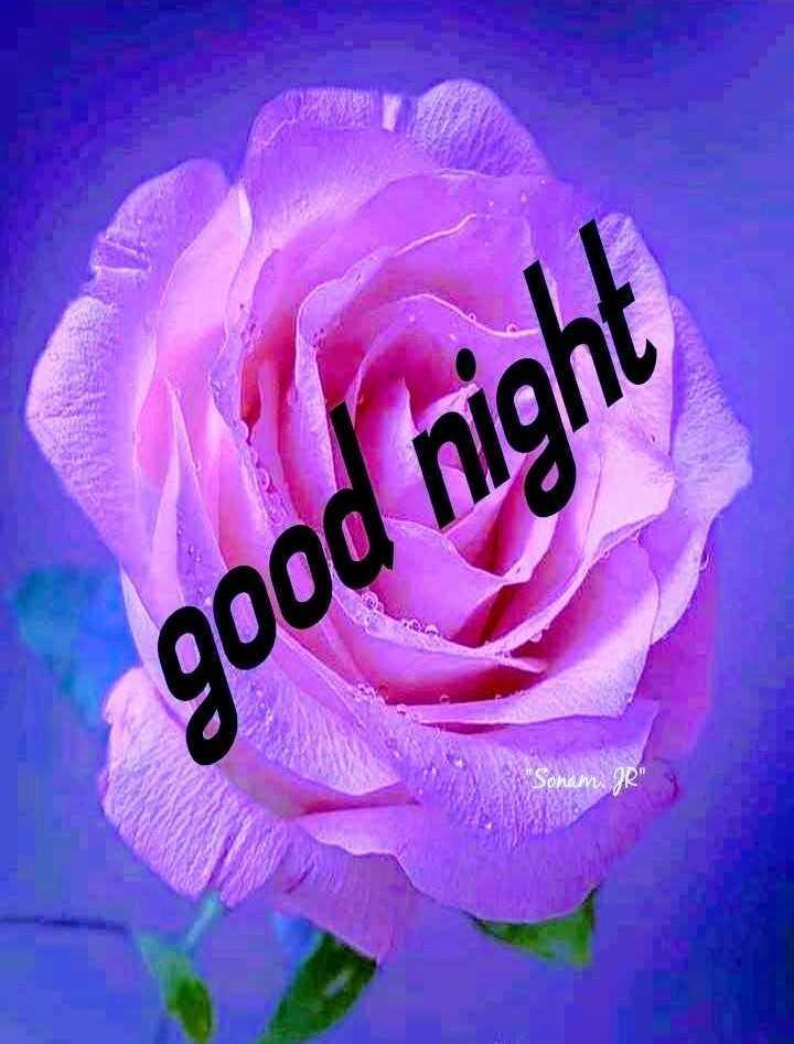 🌙शुभरात्रि - good night Sonam . JR - ShareChat