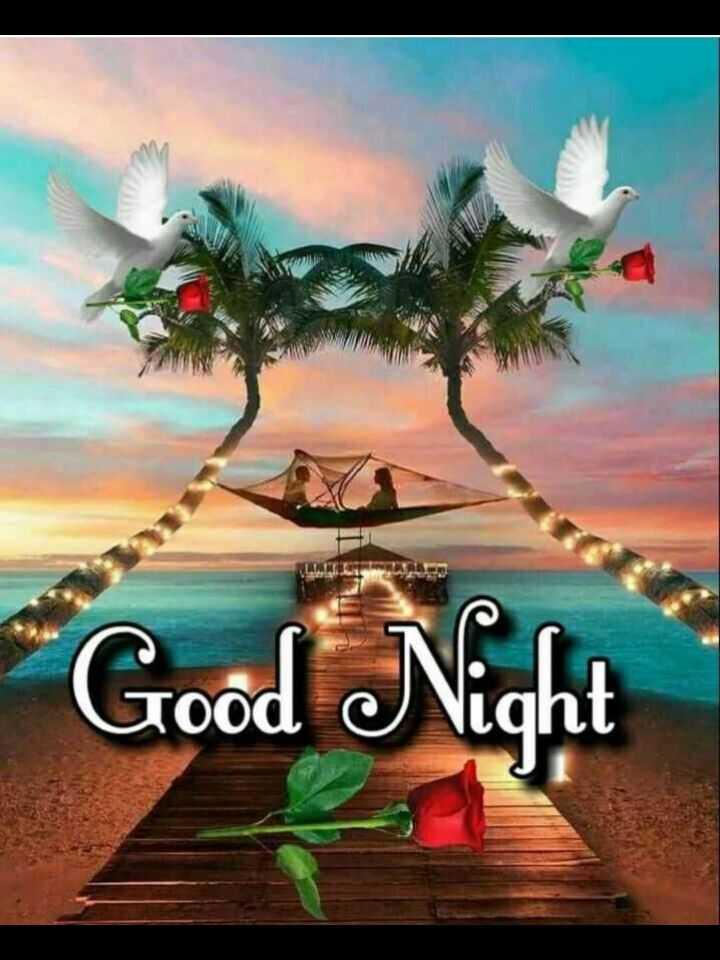 🌙 शुभरात्रि 🌙 - * Good Night - ShareChat