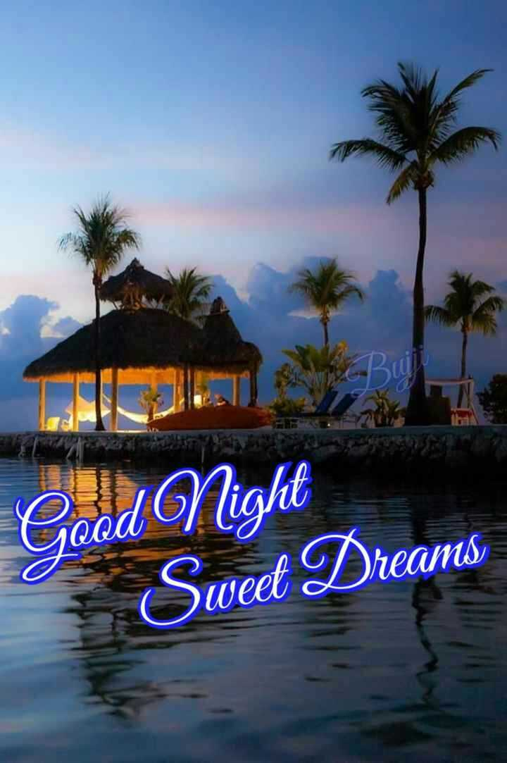🌙💞 शुभ रात्री 💞🌙 - Good Night Sweet Dreams - ShareChat