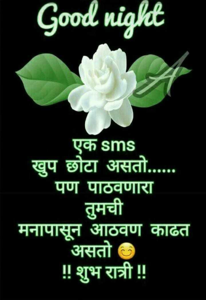 😴शुभ रात्री - Good night एक sms खुप छोटा असतो . पण पाठवणारा तुमची मनापासून आठवण काढत असतो ॥ शुभ रात्री ! ! - ShareChat