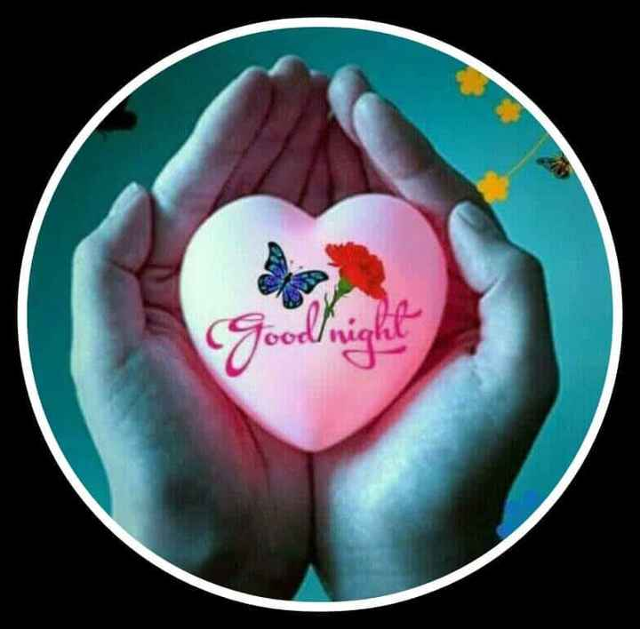😴शुभ रात्री - Goodnight - ShareChat