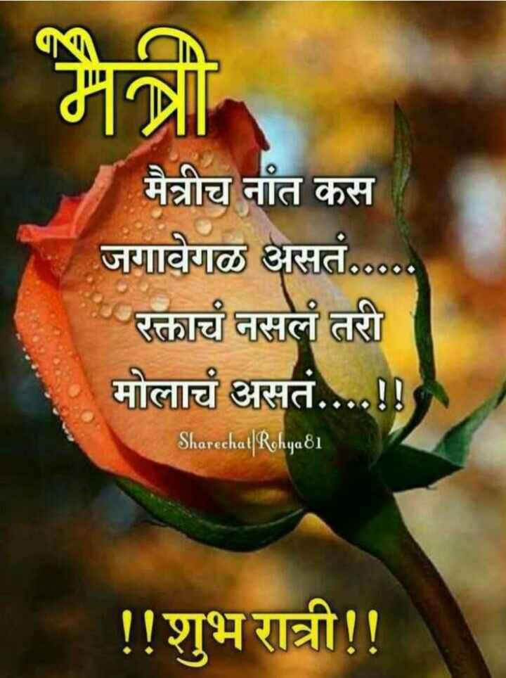 😴शुभ रात्री - मैत्रीच नांत कस जगावेगळ असतं . . . रक्ताचं नसलं तरी मोलाचं असतं . . . . ! ! Sharechat   Rohya81 ! ! शुभ रात्री ! ! - ShareChat