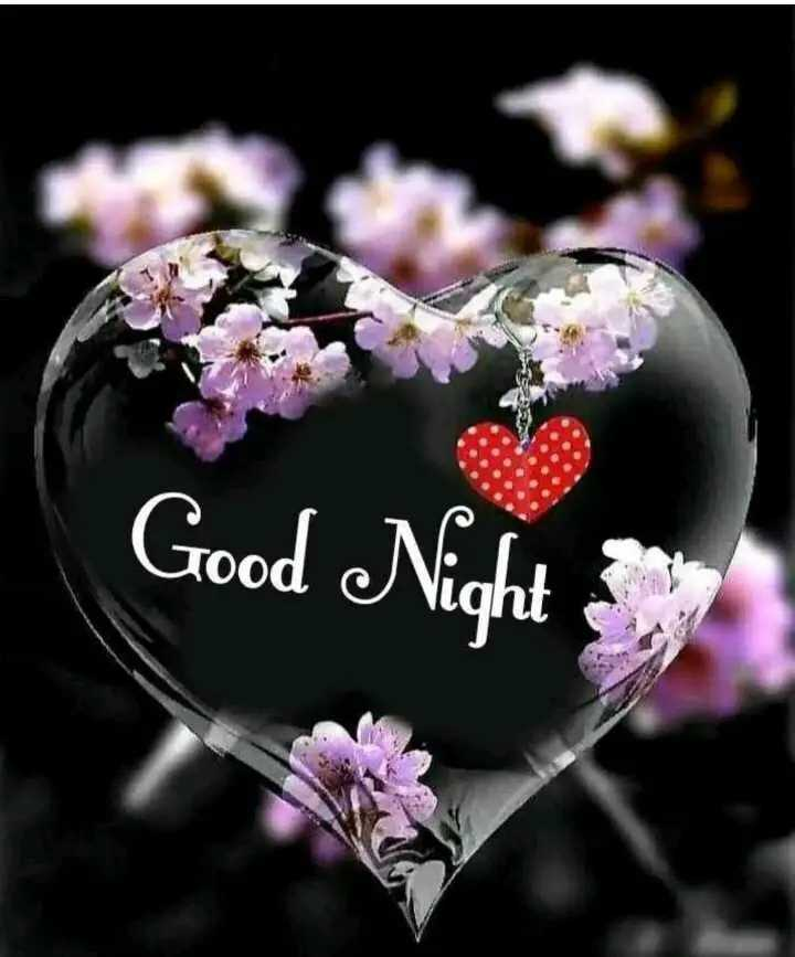 #शुभरात्री😴 - Good Night - ShareChat