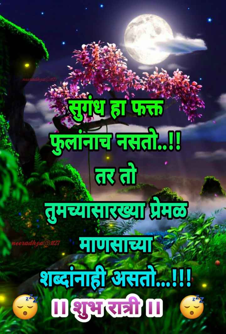 😴शुभ रात्री - neeradhya @ 27 गंध हा फक्त फुलांनाच नसती . . ! ! । तर तो तुमच्यासारख्या प्रेमळ . माणसाच्या शब्दांनाही असतो . . . ! ! . 00 * neeradhya @ 27 - ShareChat