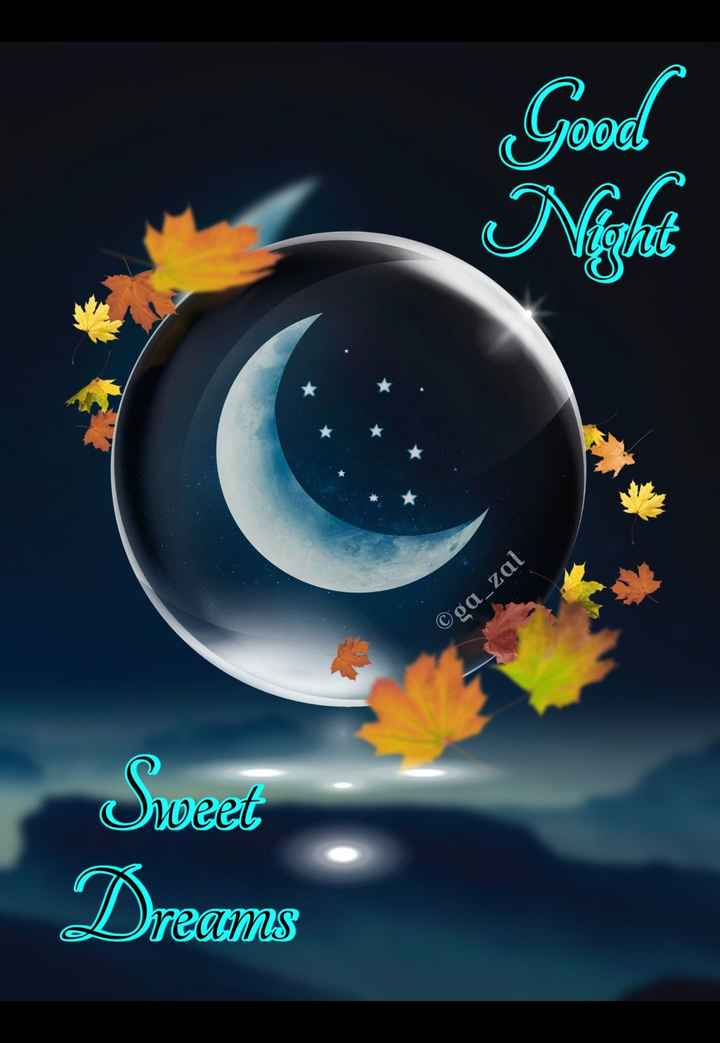 😴शुभ रात्री - Good ©ga _ zal Sweet Dreams - ShareChat