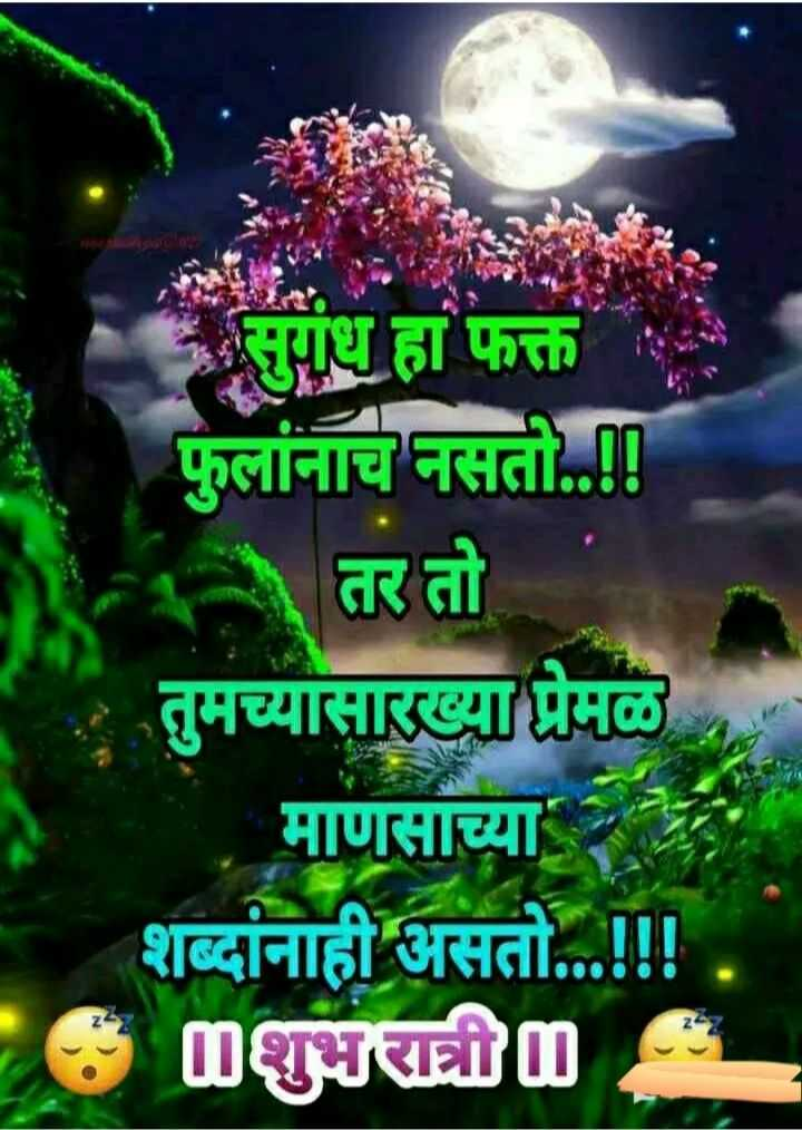😴शुभ रात्री - सुगंध हा फक्त फुलांनाच नसती . . ! ! - तर तो तुमच्यासारख्या प्रेमळ माणसाच्या व शब्दांनाही असतो . . . ! ! ! mशुभरात्री - ShareChat