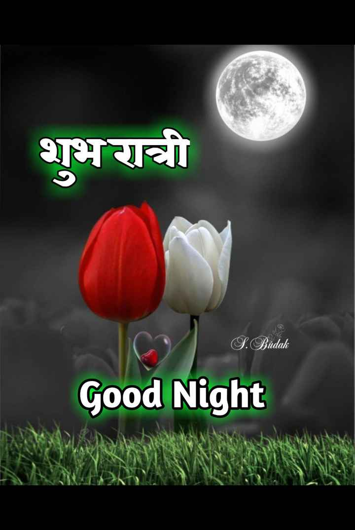 😴शुभ रात्री - शुभ रात्री S . Budak Good Night - ShareChat