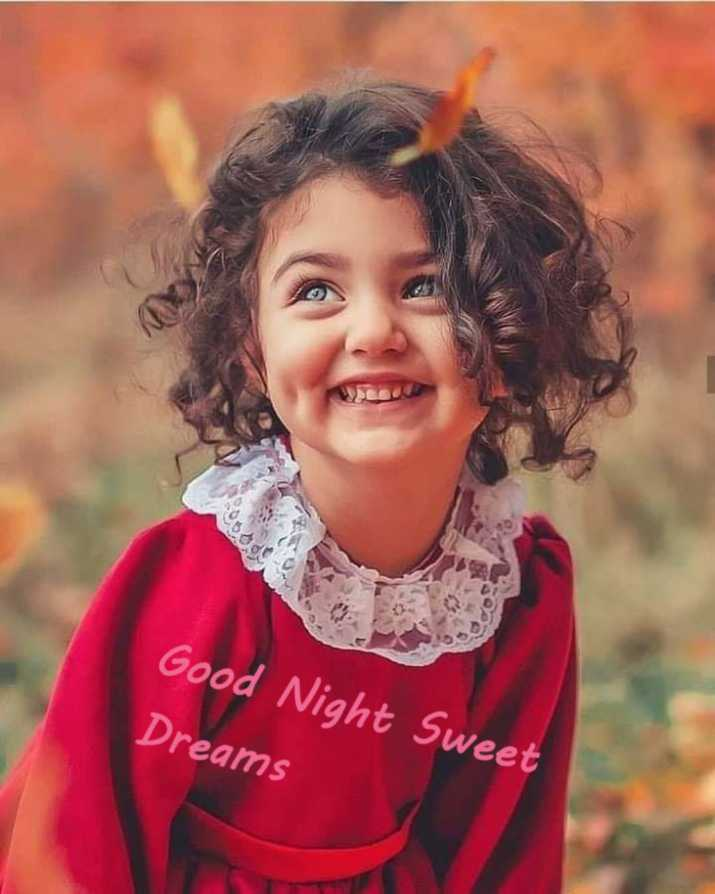 😴शुभ रात्री😴 - Good Night Sweet Dreams - ShareChat
