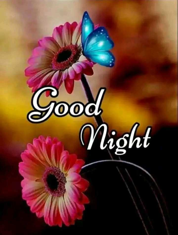 😴शुभ रात्री😴 - OO Night - ShareChat