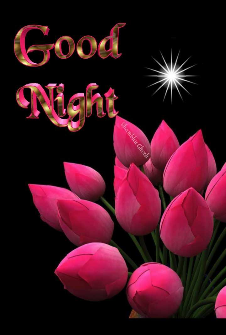 😴शुभ रात्री - Shambhu Ghosh Good - ShareChat