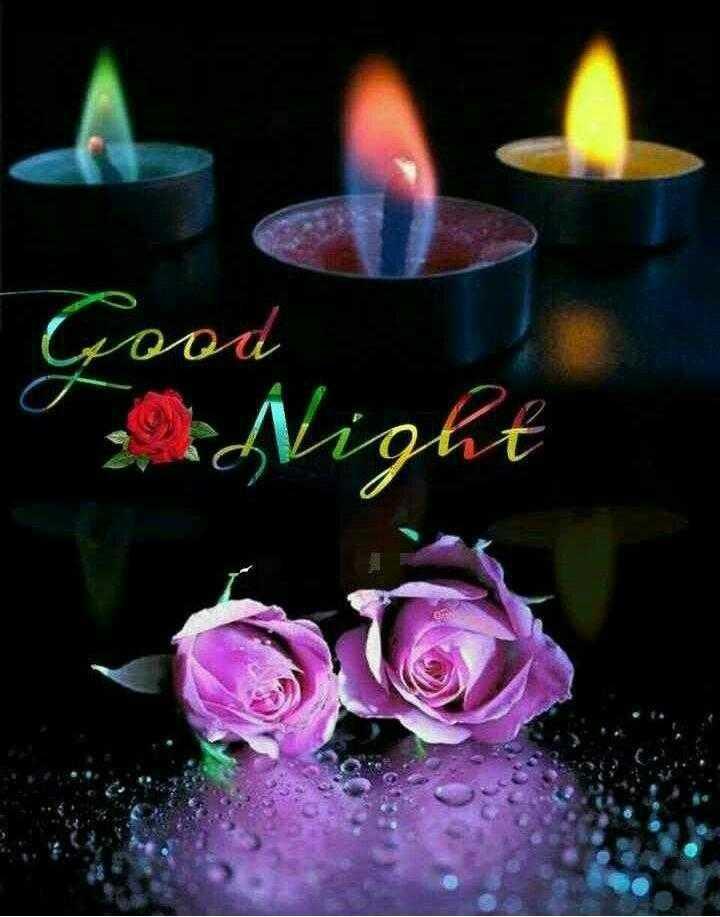 😴शुभ रात्री - . Good Night - ShareChat