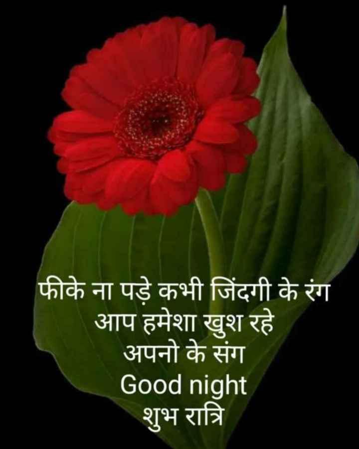 😴शुभ रात्री - फीके ना पड़े कभी जिंदगी के रंग आप हमेशा खुश रहे अपनो के संग Good night शुभ रात्रि - ShareChat