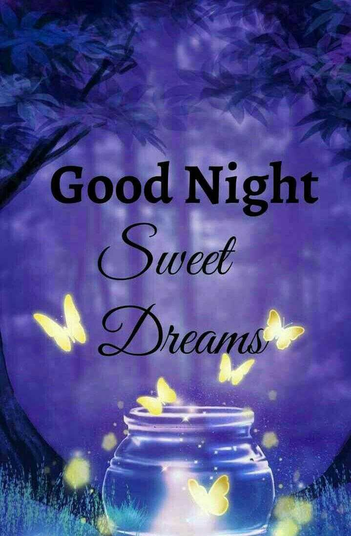 😴शुभ रात्री - Good Night Sweet W Dreams - ShareChat