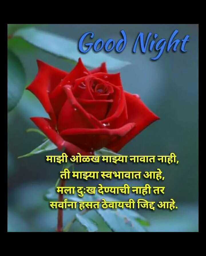 😴शुभ रात्री - Good Night माझी ओळख माझ्या नावात नाही , ती माझ्या स्वभावात आहे , मला दुःख देण्याची नाही तर सर्वांना हसत ठेवायची जिद्द आहे . - ShareChat